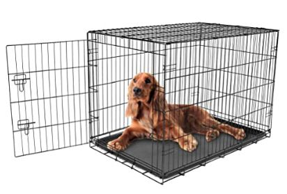 carlson best dog crate kennel