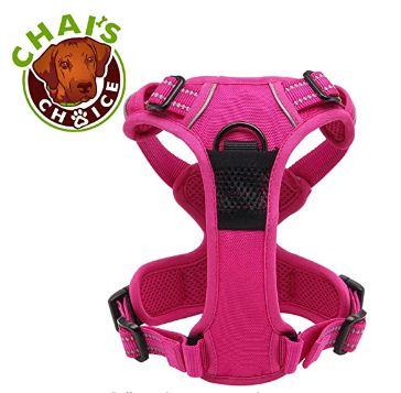 chai best dog harness