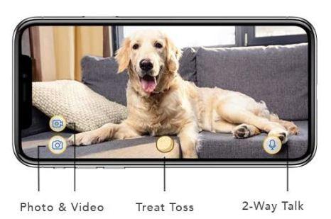 where to buy furbo dog camera
