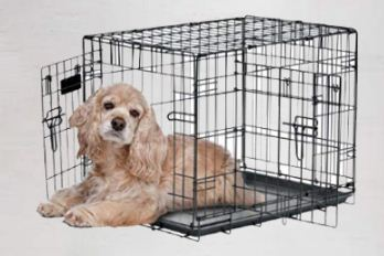 petmate best dog crate kennel
