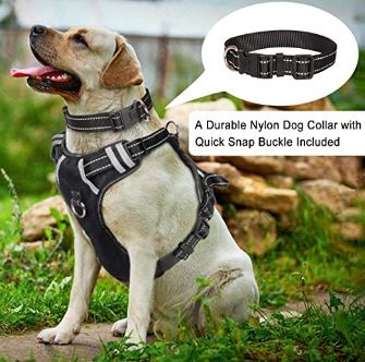 best front clip harness for large dogs