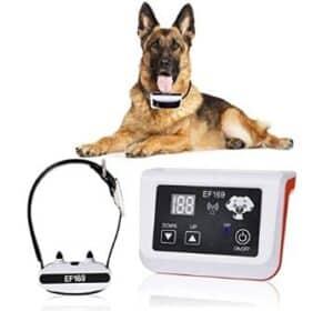 feeke dog collar
