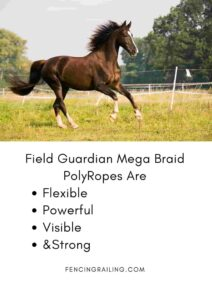 electric horse fencing polywire