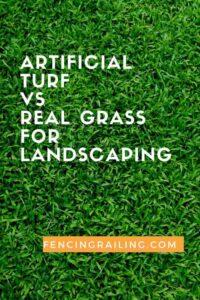 artificial grass vs natural grass