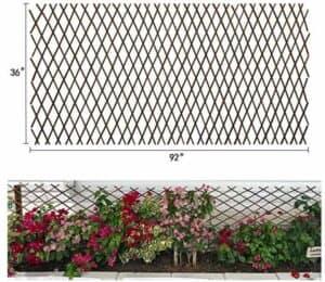 expandable lattice fence